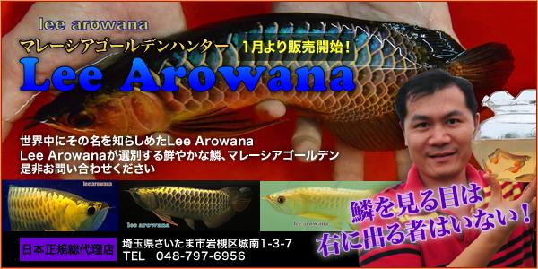Lee Arowana 1月より販売開始